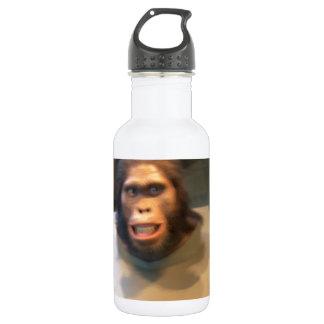 Australopithecus africanus; museum exhibit 18oz water bottle