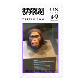 Australopithecus africanus; museum exhibit stamp