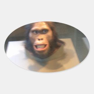 Australopithecus africanus; museum exhibit oval sticker