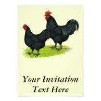 Australorp Black Chickens Invitation