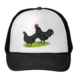 Australorp Black Chickens Trucker Hat