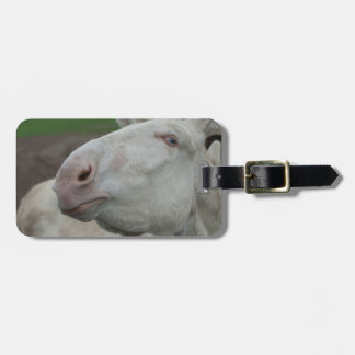 Austria-Hungarian White Donkey Tags For Luggage