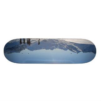 austria skateboard deck