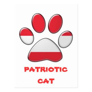 Austrian patriotic cat postcard