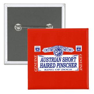 Austrian Short Haired Pinscher Pinback Buttons