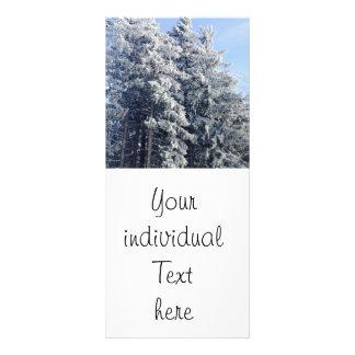 Austrian Winter Landscape Full Color Rack Card