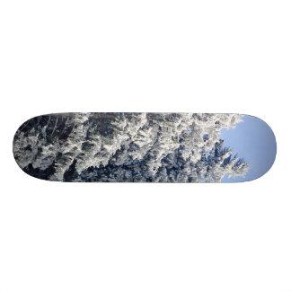 Austrian Winter Landscape Skateboard