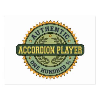 Authentic Accordion Player Postcard