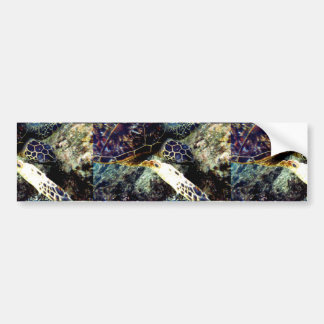 Authentic Hawaiian Sea Turtle Photography Bumper Sticker