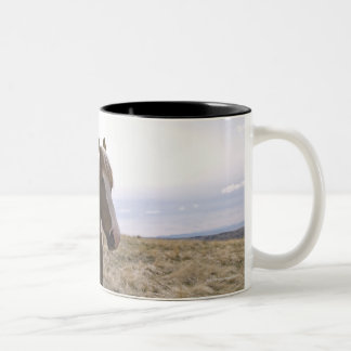 Authentic young cowgirl on range with horse in Two-Tone coffee mug