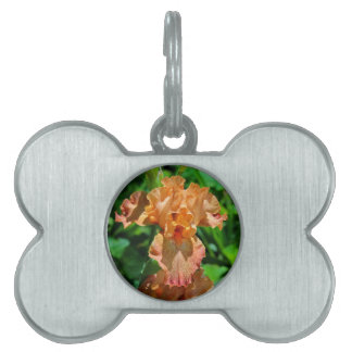 Author of Hope Pet ID Tag