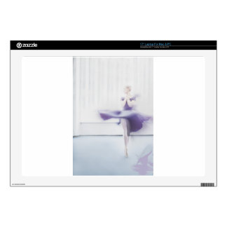 """Author's art print by photographer 17"""" laptop decal"""