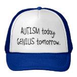 Autism Today Genius Tomorrow Mesh Hats