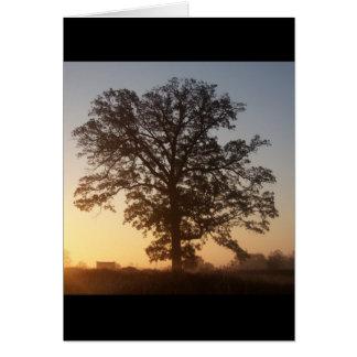 Autmn Tree At Dawn Card
