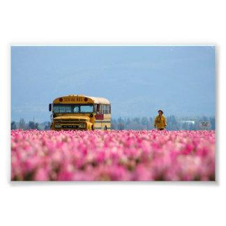 Autobús escolar, autobús mágico fotografía