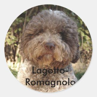 autocollant, Lagotto-Romagnolo Pegatinas Redondas