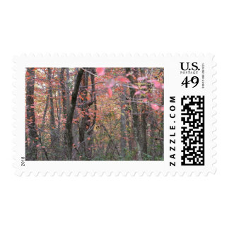 AUTOM COLORS POSTAGE STAMP