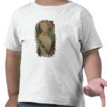 Autorretrato, c.1725-40 camisetas