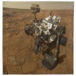 Autorretrato de la curiosidad de Marte Servilletas De Papel