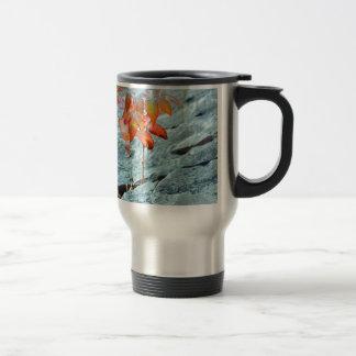 Autum en la roca tazas de café