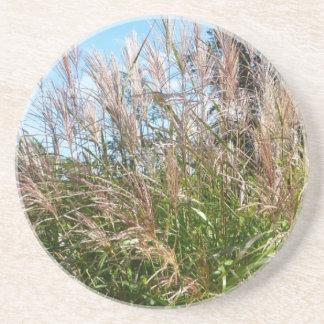 Autum Grass - Coaster / Untersetzer