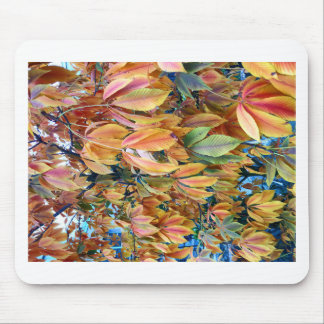 Autum Leafs Mouse Pad