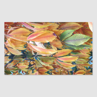 Autum Leafs Rectangular Sticker