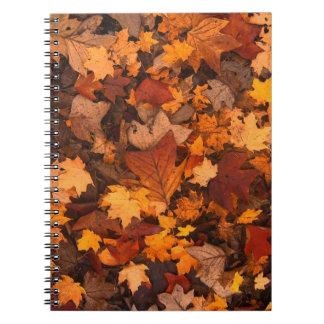 Autum Leaves Notebooks