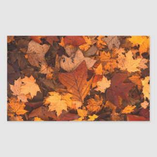 Autum Leaves Rectangular Sticker