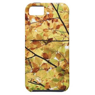 AUTUM LEAVES WALLPAPER iPhone SE/5/5s CASE