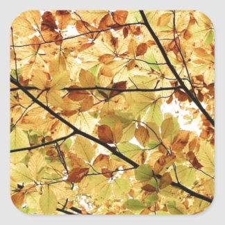 AUTUM LEAVES WALLPAPER SQUARE STICKER