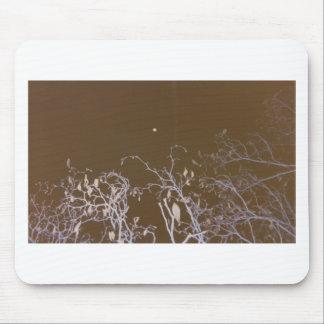 autum moon.jpg mouse pad