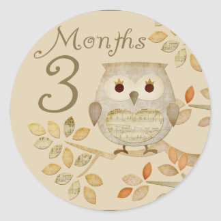 Autum Owl 3 Months Sticker