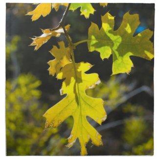 Autumn 14 napkin