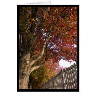 Autumn ~ 15 card