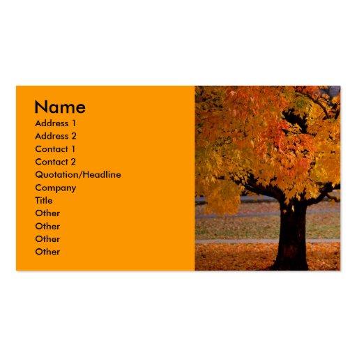 autumn (1), Name, Address 1, Address 2, Contact... Business Card Template