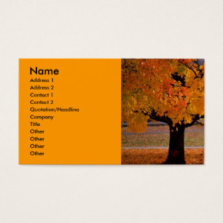 autumn (1), Name, Address 1, Address 2, Contact... Business Card