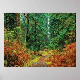 Autumn 31 cmyk print
