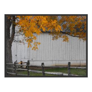 ~ Autumn ~ 33 Postcard