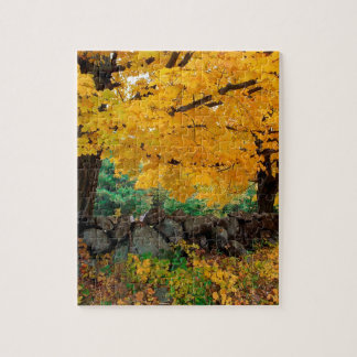 Autumn A Golden Season In New England Jigsaw Puzzles