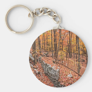 Autumn Above the Trail Keychain
