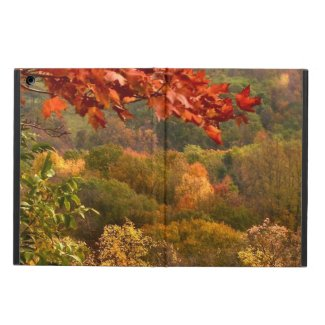 Autumn Abstract iPad Air Covers