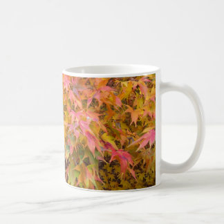 Autumn Acer Leaves Mug