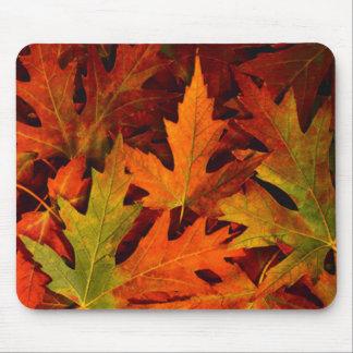 Autumn again.. mouse pad