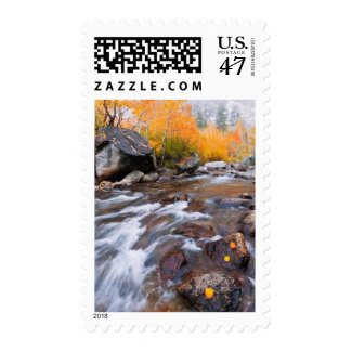 Autumn along Bishop Creek, CA Postage