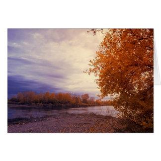 Autumn Along The River Card