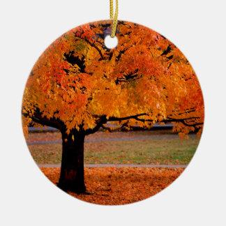 Autumn An Beauty Ornaments