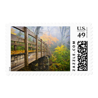 Autumn Appalachian Hiking Trail Postage Stamp