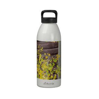 Autumn Aspen Leaves Water Bottles