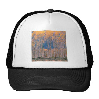 Autumn Aspen Splendor Jackson Hole Wyoming Trucker Hat